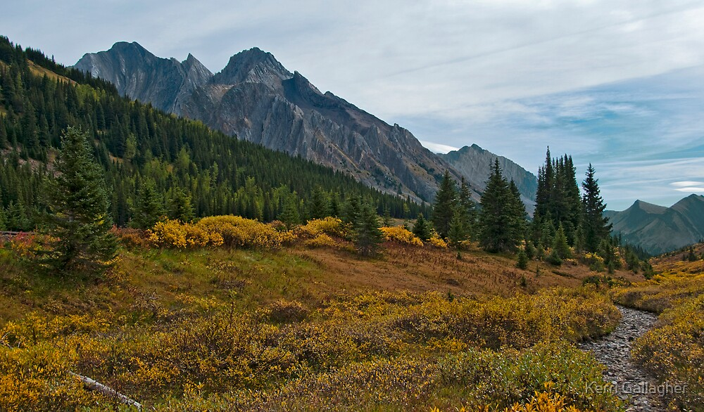 Autumn In The Rockies by Kerri Gallagher