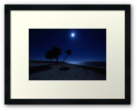 starry nights by kathy s gillentine