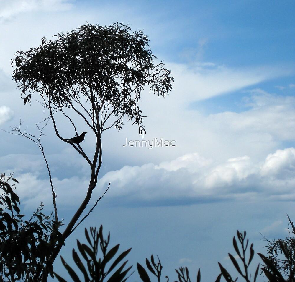 Blue Day...  by JennyMac