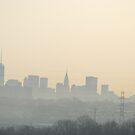 New York Skyline by LeonidasBratini