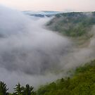 Pennsylvania's Grand Canyon by shawng13