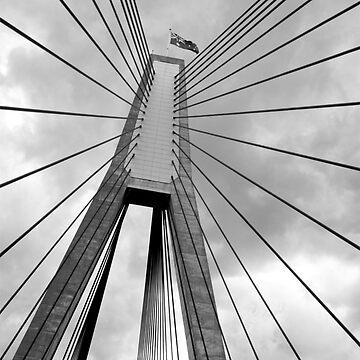 Anzac Bridge by Braids