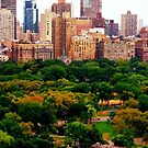 Central Park Upper West Side by ShellyKay