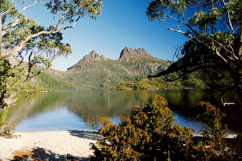 Cradle Mountain towers over Dove Lake Tasmania by Ross Gibb