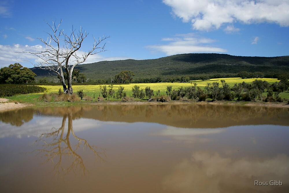 Farm dam at The Grampians  by Ross Gibb