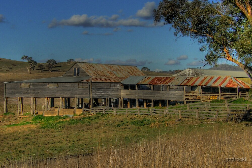 Freemantle Road Shearing Shed 002 by pedroski