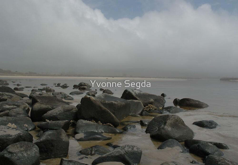 Lagoon by Yvonne Segda