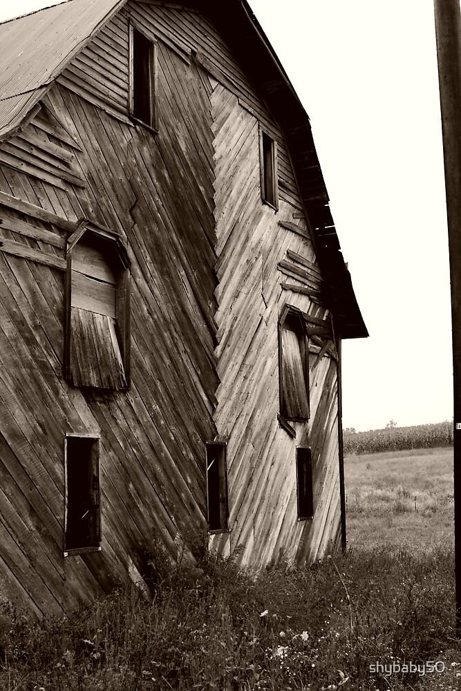 Old Amish Barn by shybaby50