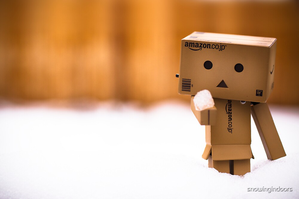 danbo in the snow by snowingindoors