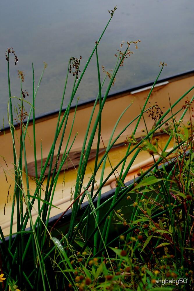 Lonley Canoe by shybaby50