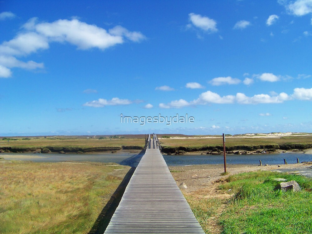 Walk to the Beach by imagesbydale