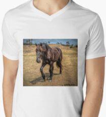 Percheron colt Men's V-Neck T-Shirt