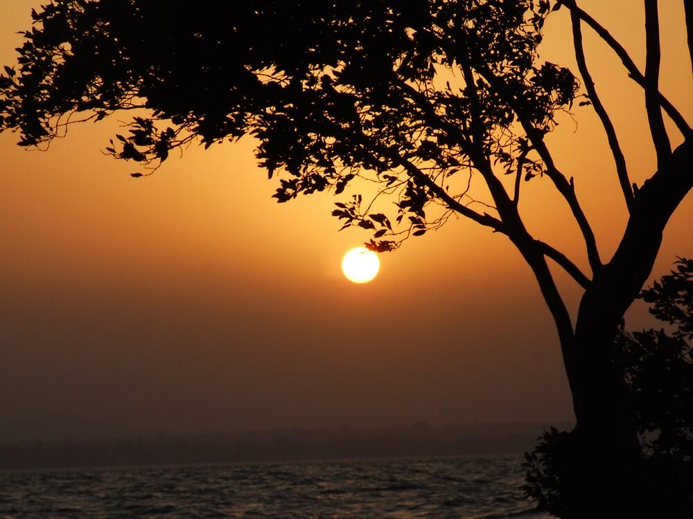 The dissapearing sun by karenphotos
