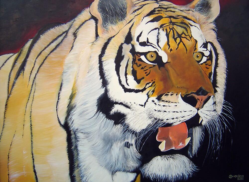 Bengal Tiger by Comonian