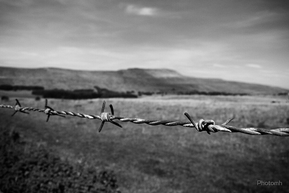 Barbed by Photomh