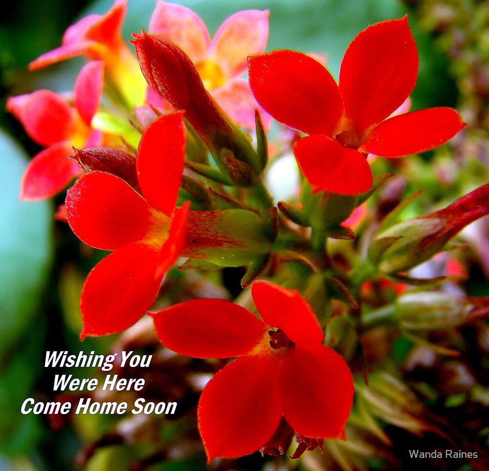 Wishing You Were Here by Wanda Raines