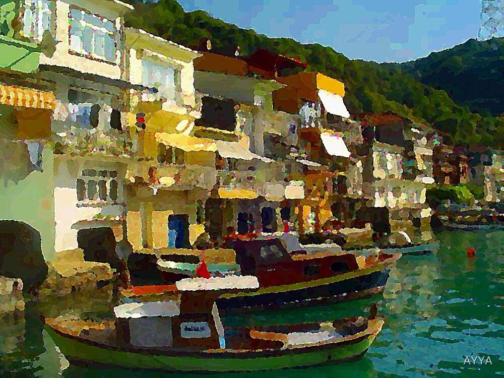 Anadolu Kavak by AYYA