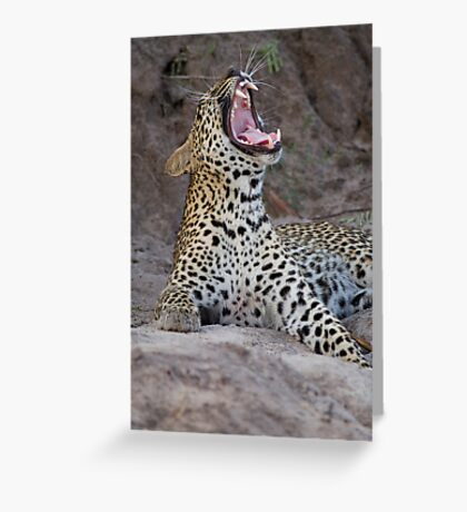 Teeth of the leopard Greeting Card