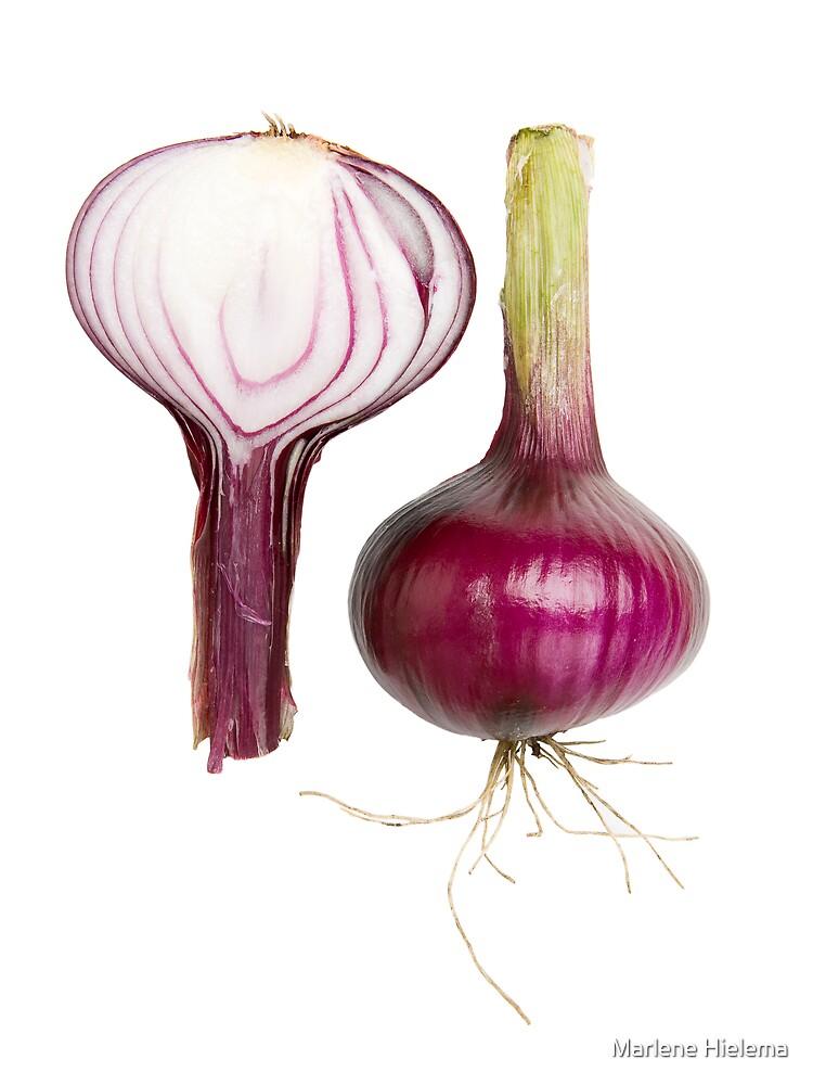 Red Onion by Marlene Hielema