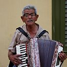 The Accordionist by photoloi