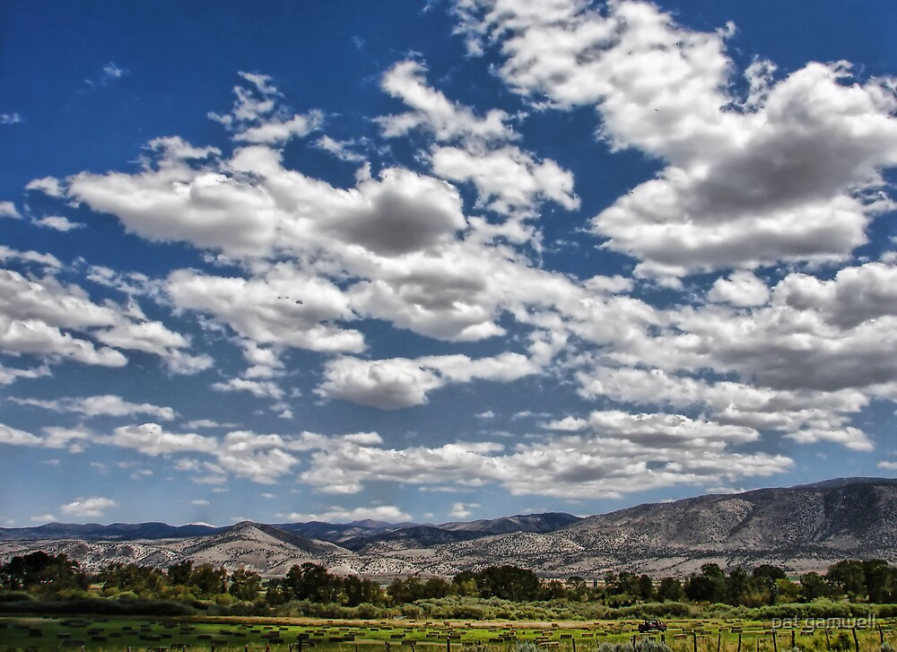 Under the Nevada Sky by pat gamwell