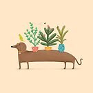 Dacshund & Parrot by Sophie Corrigan
