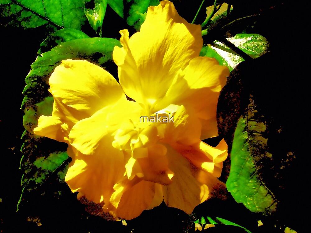 yellow flower by makak