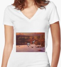 Birds of Passage Women's Fitted V-Neck T-Shirt