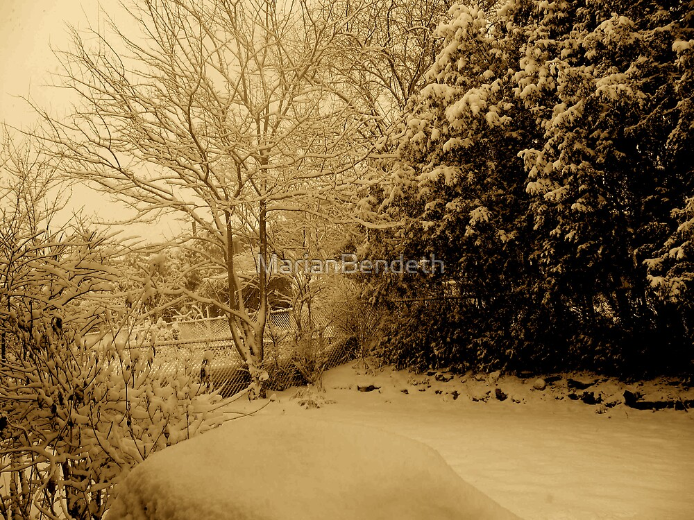 Sepia Winter Days by MarianBendeth