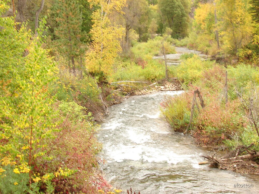 Creek in the Canyon by eltotton