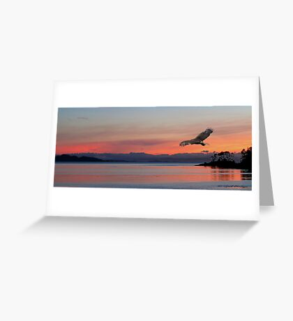Point Of View l Greeting Card