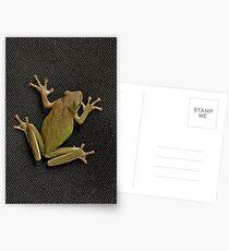 Tree Frog Postcards