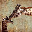 A Mother's Kiss by Judy Vincent