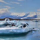 Icelandic Glaciers  by Sam Parsons