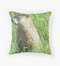 Groundhog Throw Pillow