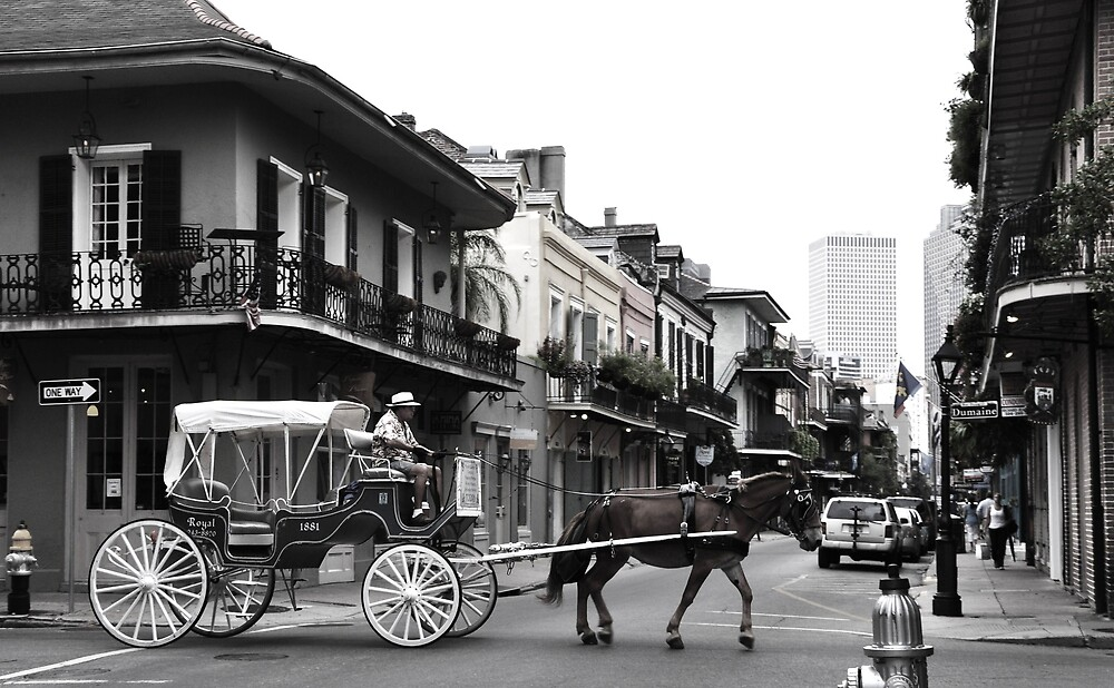 New Orleans Carriage Ride by Erin Brown