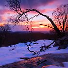 From the top of Snowy Creek .Lake Mountain by Donovan Wilson
