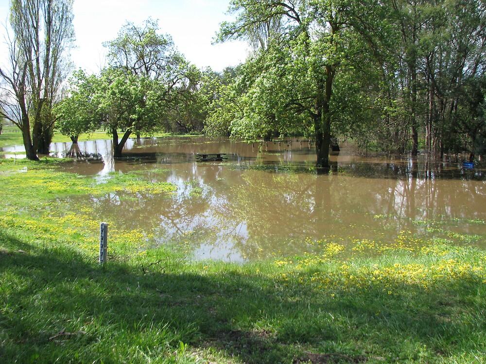 Flooded by mrsnatetah