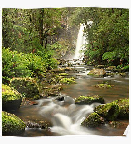 Hopetoun Falls - Otway ranges Poster