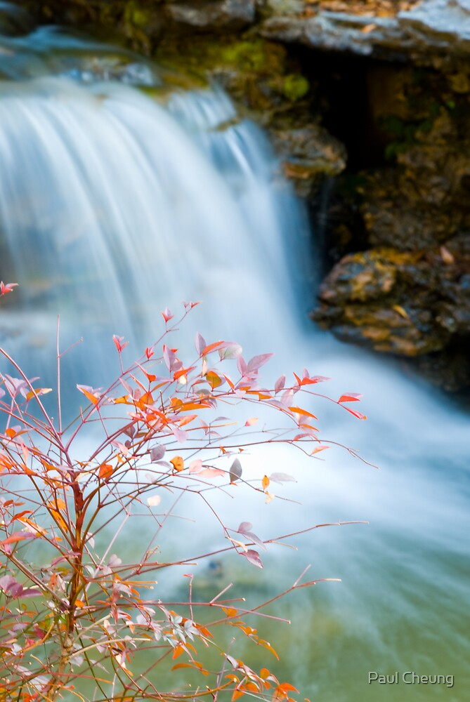 a small waterfall by Paul Cheung