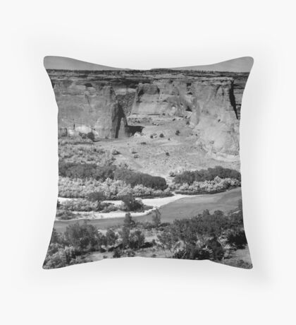 Water in Canyon De Chelly ~ Black & White Throw Pillow