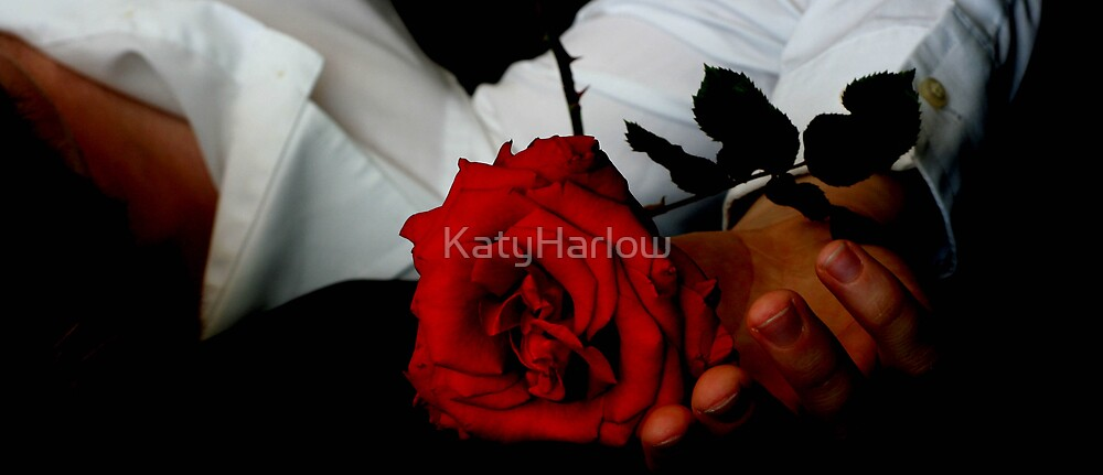Rose by KatyHarlow