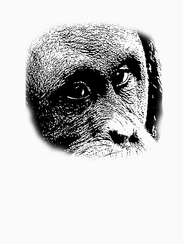 Orangatang by chris2766