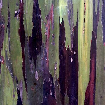 Treebark 5 by cuprum