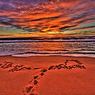 Footprints In The Sand - Revisited - Newport Beach - The HDR Experience by Philip Johnson