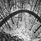 Winter Wonderland by Bojoura Stolz