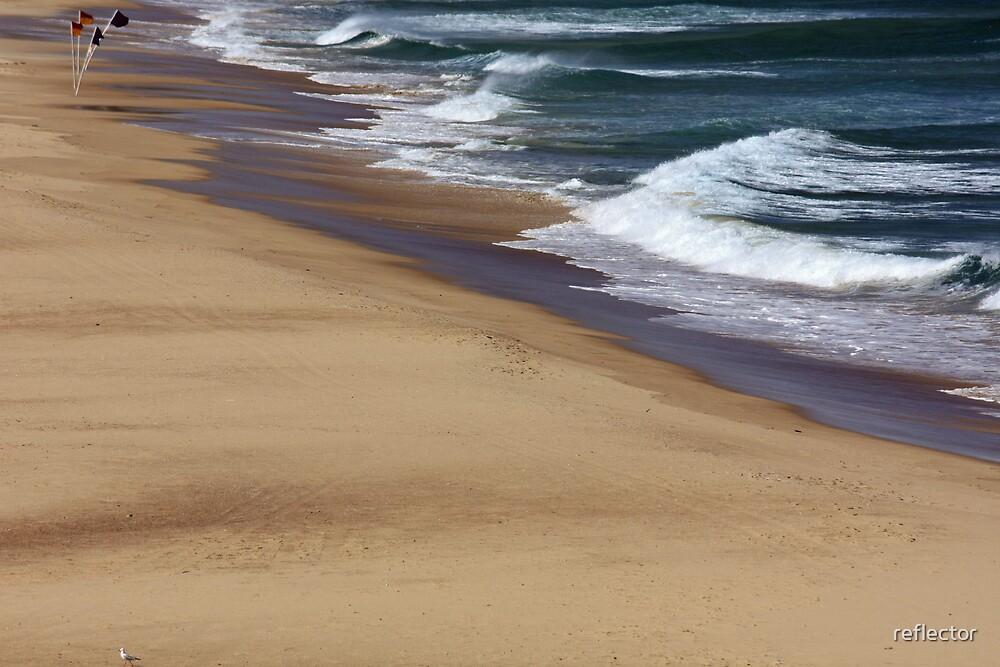 Windswept Shoreline by reflector