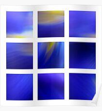Dark Blue Dutch Iris Poster