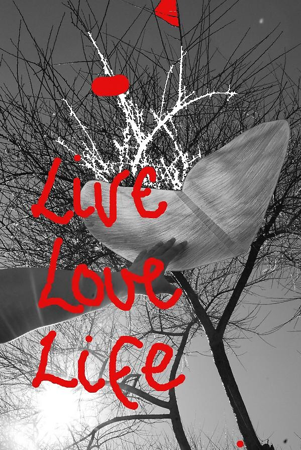Live Love Life by indierose