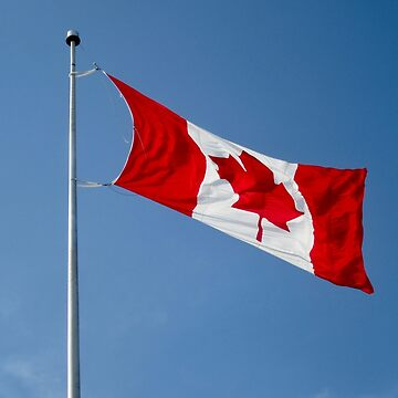 Canadian Flag by Shulie1